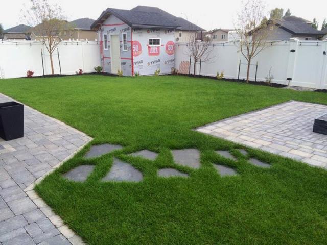 Backyard Resod